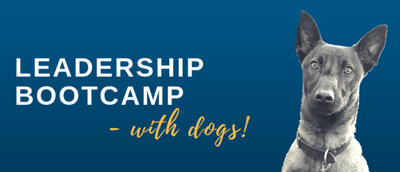 Leadership Training Bootcamp - with Dogs!
