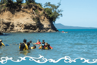 Image for event: Torbay Snorkel Day