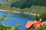 Image for event: Marlborough Sounds Day Excursion: Boat, Hike, Eat!