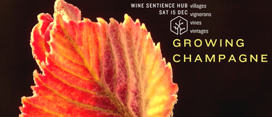 Growing Champagne: A Guide to Vigneron Champagne