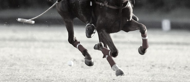 Queenstown Polo - Silver Cup