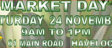 Havelock Lions Market Day