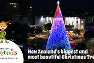 Image for event: Hamilton Christmas Tree Nightly Lighting