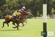 Image for event: Land Rover NZ Polo Open