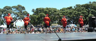 The Devonport Christmas Festival Dance In the Park