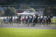Image for event: Twilight Trots