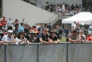 Image for event: Interislander Summer Festival Trots - Family Fun Day