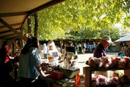 Image for event: Black Barn Growers' Market