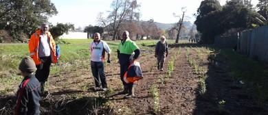 Tararata Creek Caretaking Conservation Day