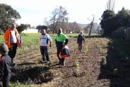 Image for event: Tararata Creek Caretaking Conservation Day