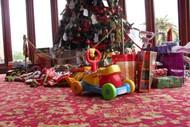Image for event: Rotorua Museum Community Christmas Tree