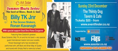 AA Solar Summer Music Series Billy TK Jnr & Ronan Kavanagh