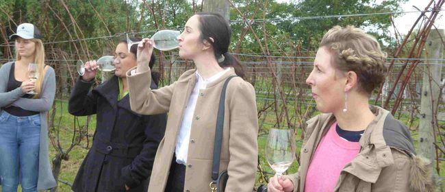 Wine Tricks Wine Tour