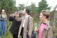 Image for event: Wine Tricks Wine Tour