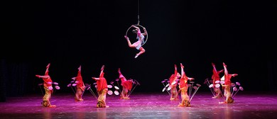 Chinese Acrobatic Performance