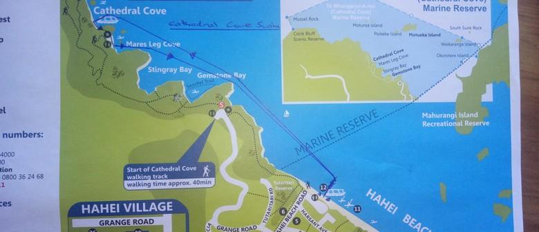 Cathedral Cove Swim