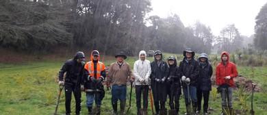 Donny Park Restoration Project