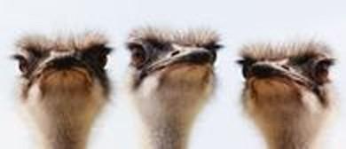 Hot Ostrich Trio