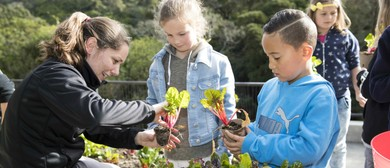 Discovery Garden Familiarisation Tour for Teachers
