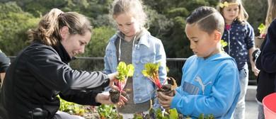 Discovery Garden Familiarisation Tour for Teachers