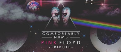 Comfortably Numb - The Pink Floyd Tribute