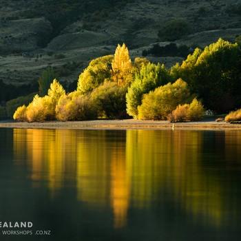 Autumn Colours Masterclass Photography Workshop