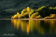 Image for event: Autumn Colours Masterclass Photography Workshop