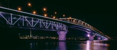 Vector Lights for The Festive Season