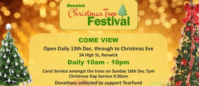Renwick Christmas Tree Festival