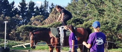 Try Out Vaulting Session - Ages 7 and Up