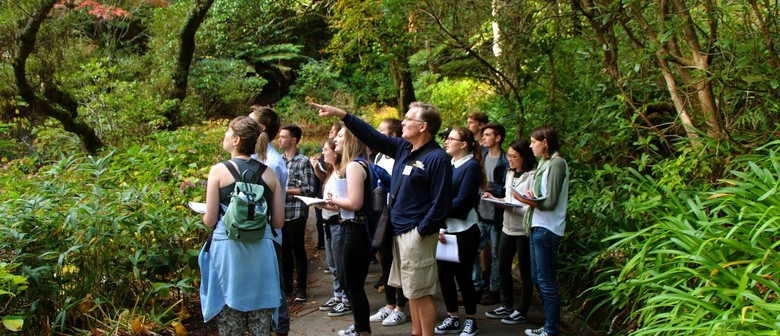 Guided Walk: Beetles, Beaks, and Branches