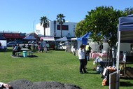 Image for event: Mount Farmers Market