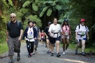 Image for event: Rotorua Walking Festival