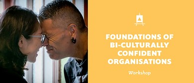 Foundations of Bi-Culturally Confident Organizations