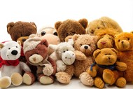 Image for event: Teddy Bears Picnic