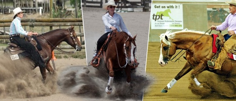 Summer Reining and Ranch Show: POSTPONED