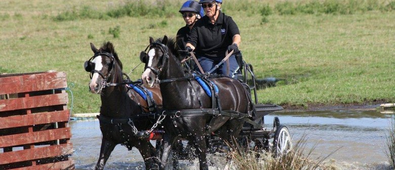 Central Districts Carriage Driving Association - Tangimoana - Eventfinda