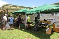 Image for event: Open Day at Matuku Link for World Wetland Day