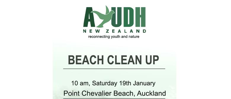 AYUDH Point Chevalier Beach Clean Up