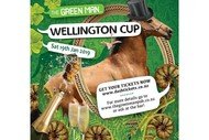 Image for event: Wellington Cup