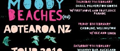 Moody Beaches Aotearoa Tour
