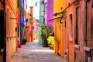 Image for event: Italian Beginners Language Course