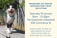 Image for event: Kitten Adoption Party