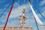 Image for event: The Silver Starlets Aerial Show