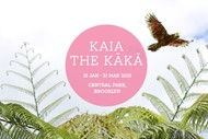 Image for event: Kaia the Kākā – Family Adventure In Nature