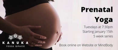 Prenatal Yoga - 5 Week Series
