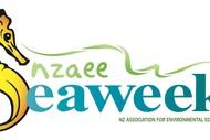 Image for event: Seaweek - EMR Reotahi Kayak Days
