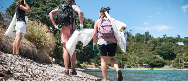 Seaweek - Mahia Beach Clean