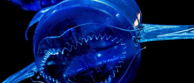 Seaweek - George Nuku's 2118: A Bottled Ocean Floor Talk