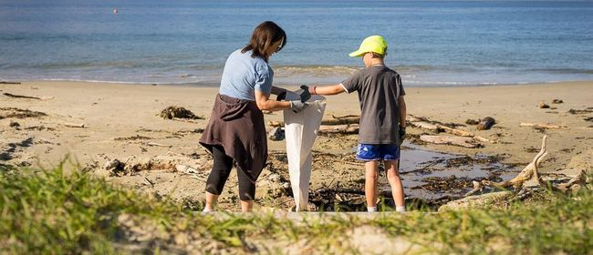 Seaweek - Whakamahia Beach Clean
